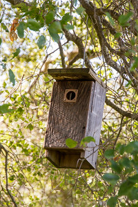 Filoli-adaptations_hike-11Mar13-03.jpg