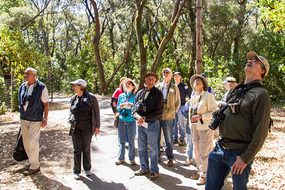 Filoli_Bird_Walk-13.jpg
