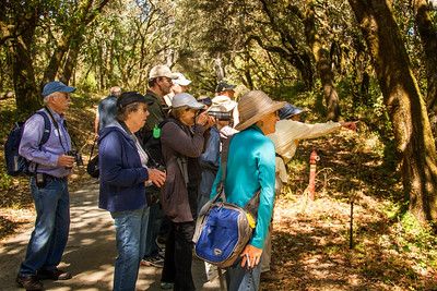 Filoli_Bird_Walk-14.jpg