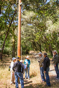 Filoli_Bird_Walk-15.jpg