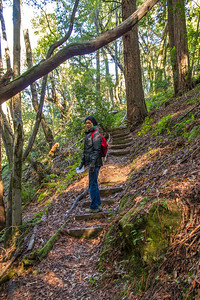 Filoli_Buddy_Hike-Jan1413-23.jpg