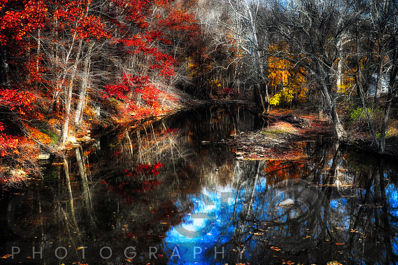 Late Fall Reflections in a Canal