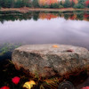 "Rock in a Pond, Acadia Nat""L Park, Maine"