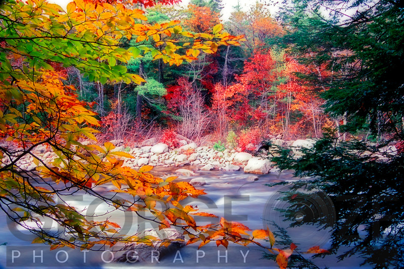 Swift River Autumn Scenic, White Mountains National Forest, New Hampshire