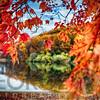 Midddle Autumn Dreamy Landscape