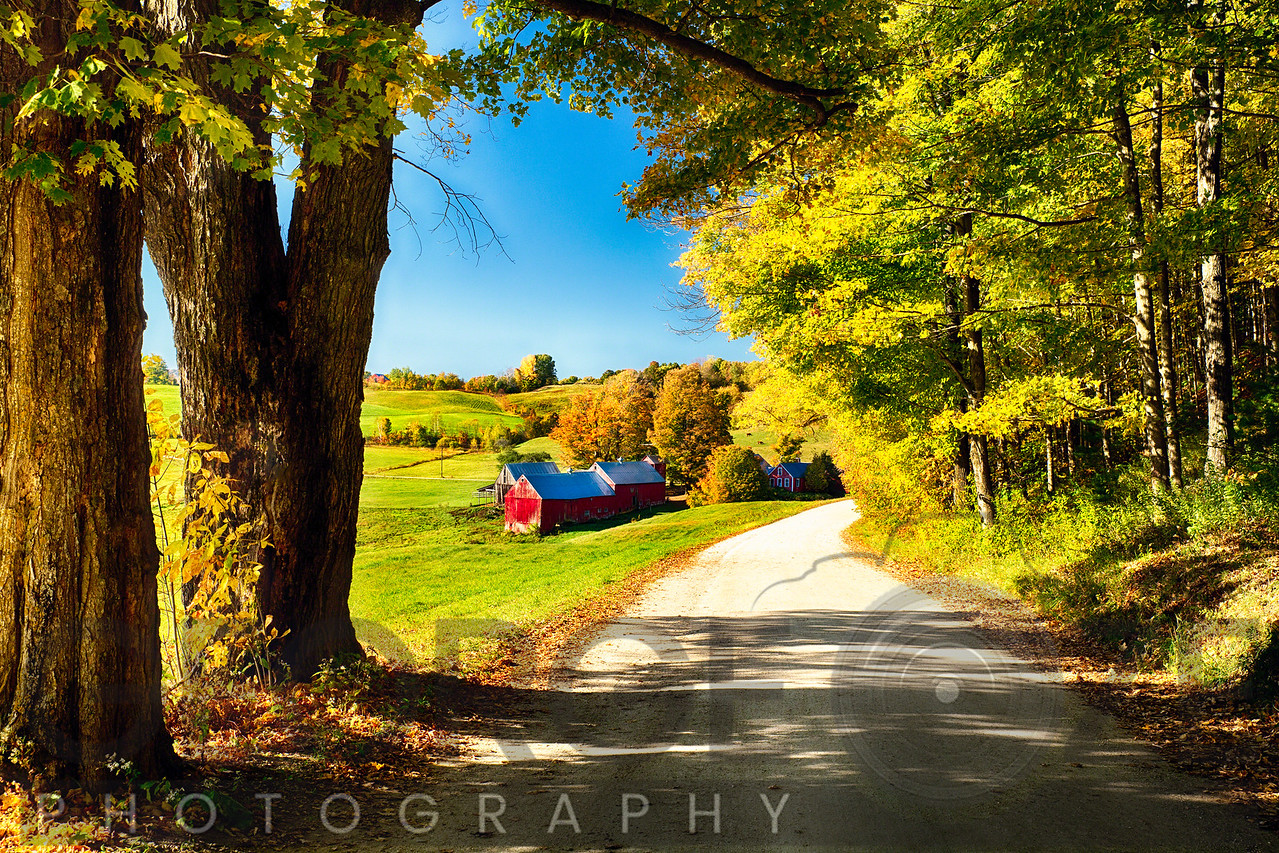 Vermont Farm Along a Country Road