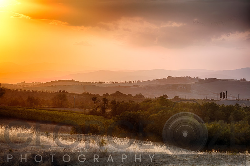 Under the Tuscan Sunset