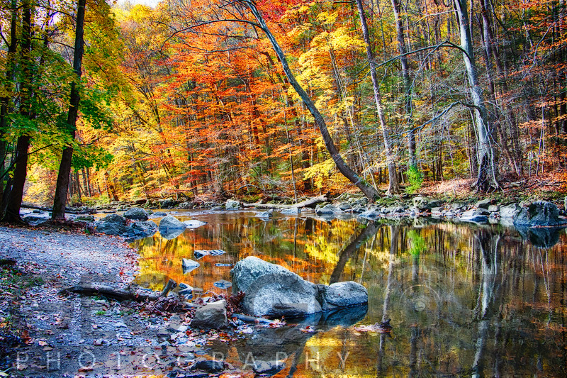Peak Fall Foliage at the Black River, New Jersey