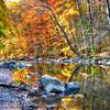 Peak Fall Foliage at the Black River, New Jersey