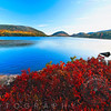 Intense Color of Fall, Eagle Lake, Acadia National Park, Maine