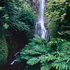 Wailua Falls on the Road To Hana, Maui, Hawaii
