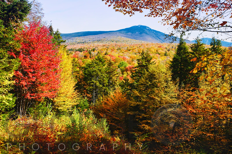 White Mountains Autumn Colors, New Hampshire