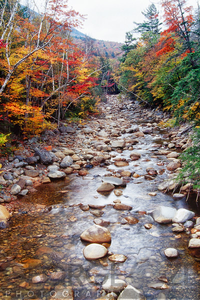 Creek in an Autumn Forest with Colorful Foliage, White Mountains, New Hampshire