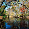 Lamington River Fall Scenic, Tewksbury, Hunterdon County, New Jersey