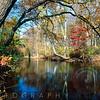 Lamington River Fall Scenic, Tewksbury, Hunterdon County, New Jersey
