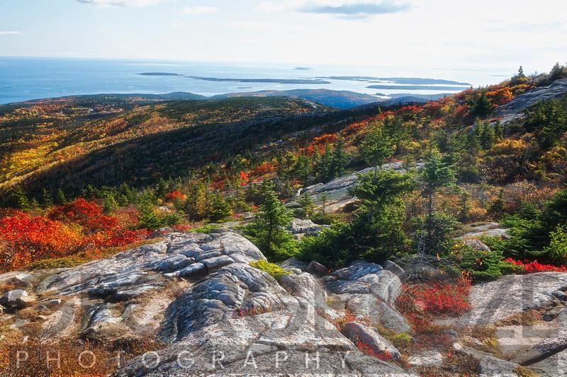 Cadillac Mountain Autumn Scenic Vista, Acadia National Park, Maine