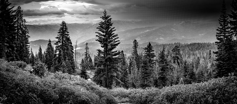 Kings Canyon Overlook B&W