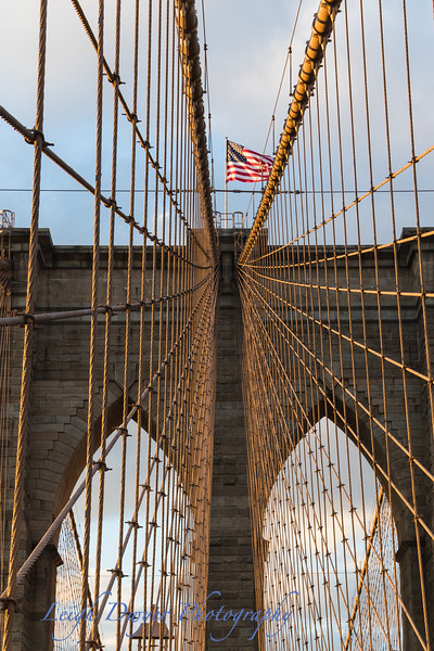 New_York_11-15-3790