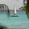 Barbados_9884