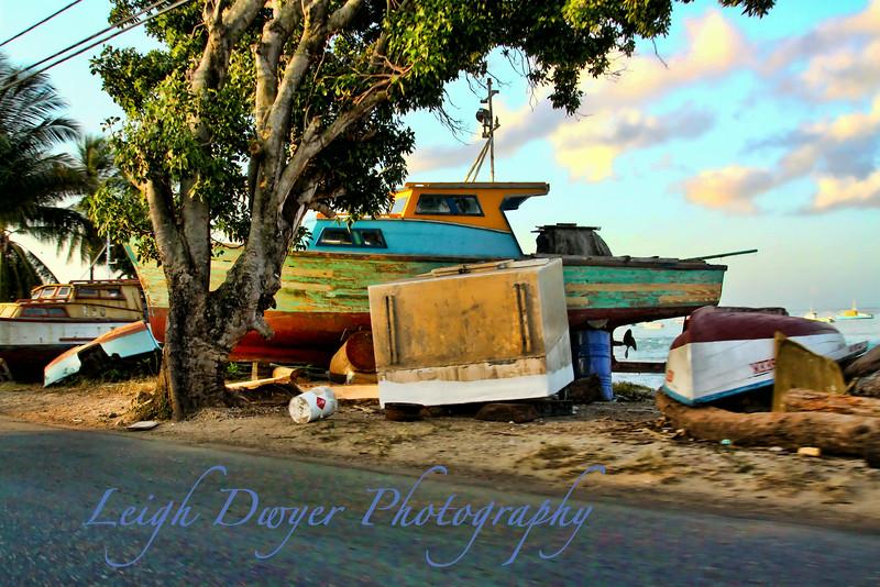 20091229-Barbados_9554c2