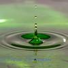 Water_Drops-5536