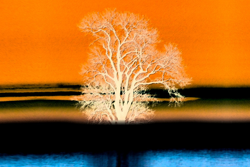 Stylized (as painted) of tree.