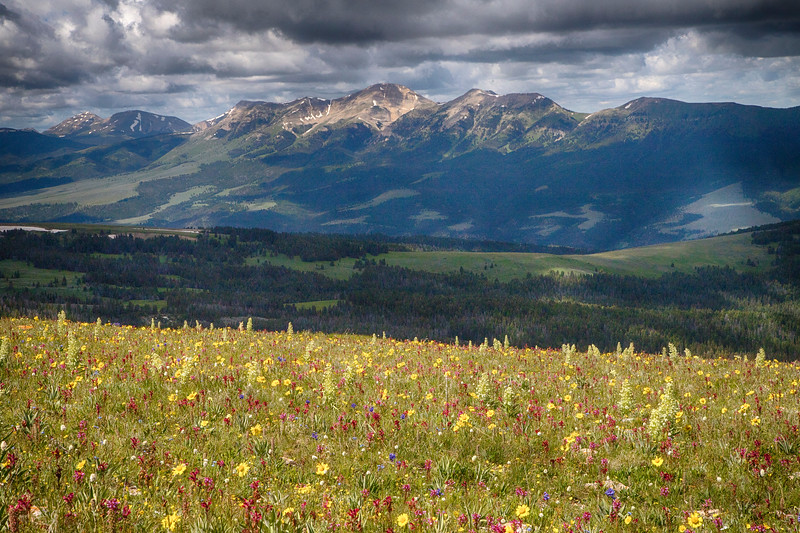 Gravelly Range and Snowcrest Mountains