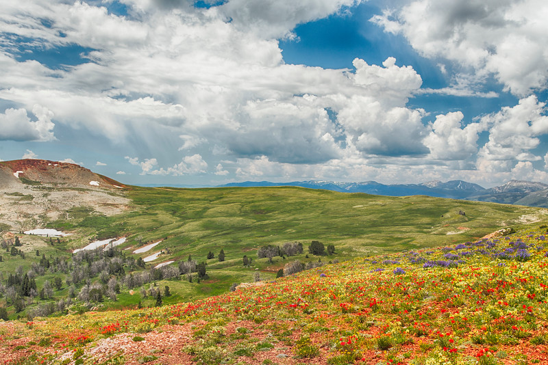 View from Gravelly Range Road, Montana
