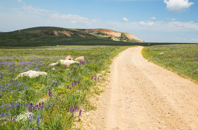 Gravelly Range Ridge Road