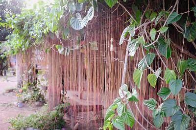 Natural veil