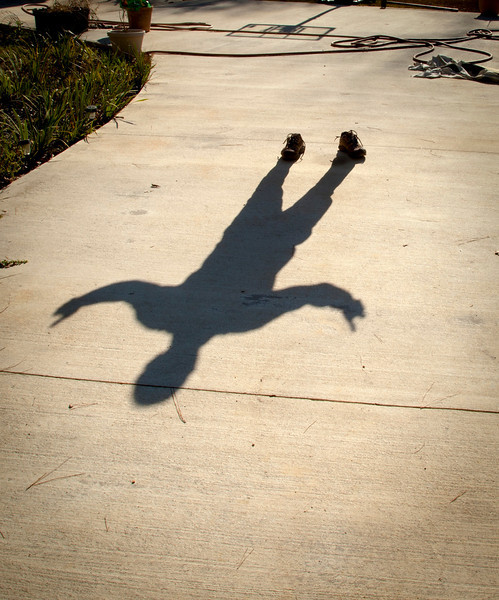 11/19 - My shadow has lost me!