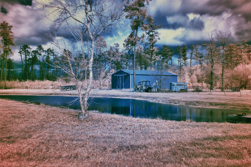 12/21  - I used an infrared filter on my 50mm 1.8, then reversed the red & blue channels and finished in HDR.