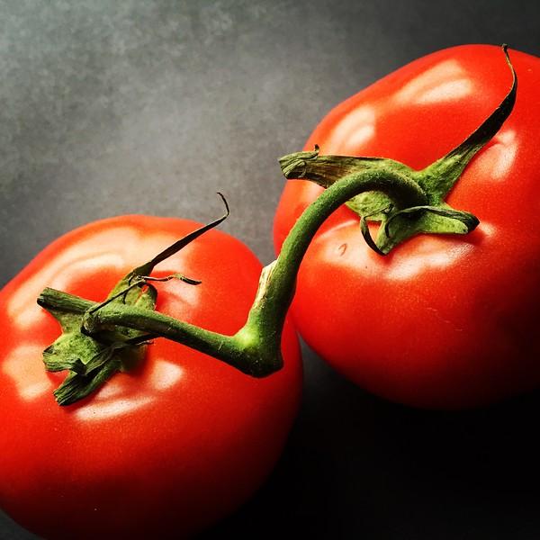 Tomato Love