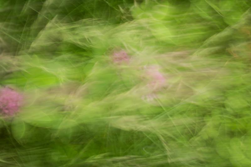 RME_Impressionist_Images_14