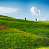 Rolling Hills with Cypress Trees, Tuscany, Italy