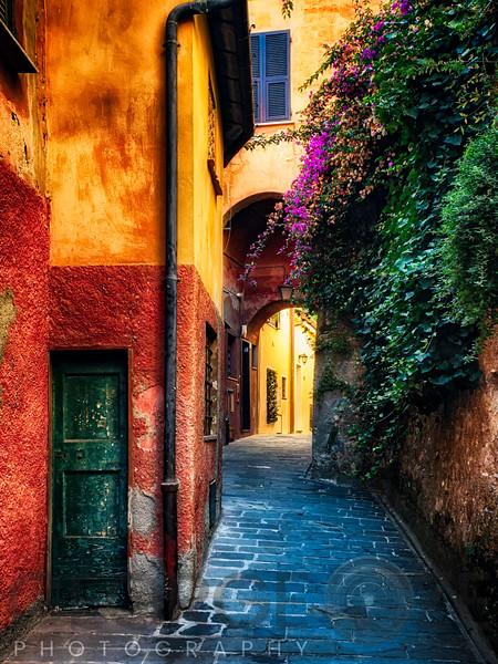 Narrow Street with Bougainvillea Flowers, Portofino, Liguria, Italy