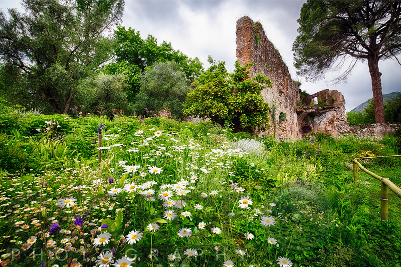 Ruins in a Garden with Flowers and Orange Tree