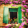 Window with Green Shutters and Flowers, Lombardy, Italy