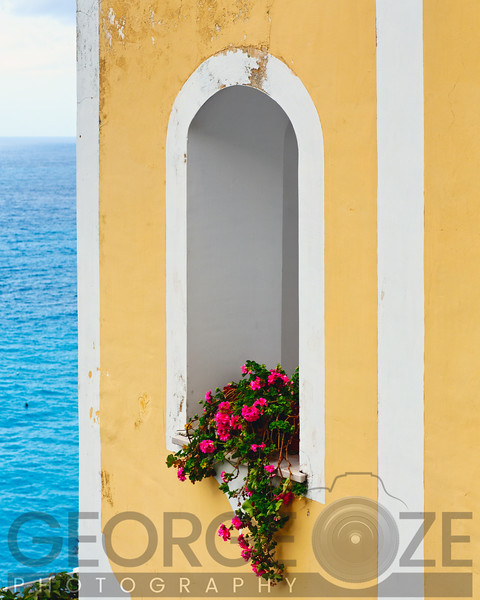 Flower in Window at Seaside, Positano, Campania, Italy