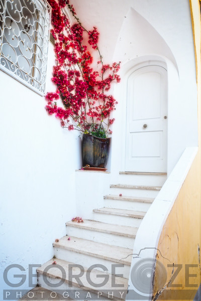 Red Flower at a Doorstedp, Positano, Campania, Italy
