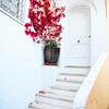 Red Flower at a Doorstedp, Positano, Campania, Italy