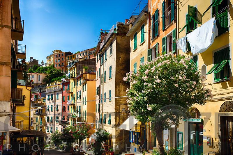 Colorful Street of Riomaggiore, Cinque Terre, Liguria, Italy