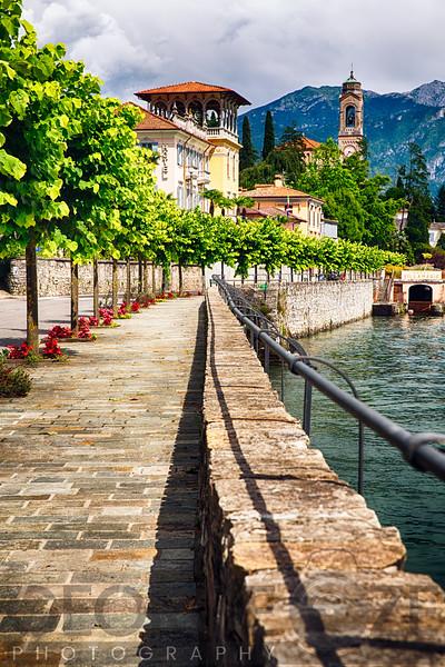 Mulberry Trees Along a Lakeside Walkway, Tremezzo,Lake Como, Lombardy, Italy