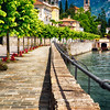 Mulberry Trees Along a Lakeside Walkway, Tremezzo,Lake Como, Lombardy, Italy