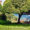 Villa Garden with a Nicely Trimmed Tree, Lake Como, Italy