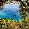 View of the Ligurian See from Hillside Vineyard, Vernazza, Italy