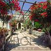 Summer Bloom in a Villa Garden, Ravello, Campania, Italy