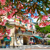 House Exterior Viewed from Under a Blooming Tree, Montyerosso Al Mare, Cinque Terre, Liguria, Italy