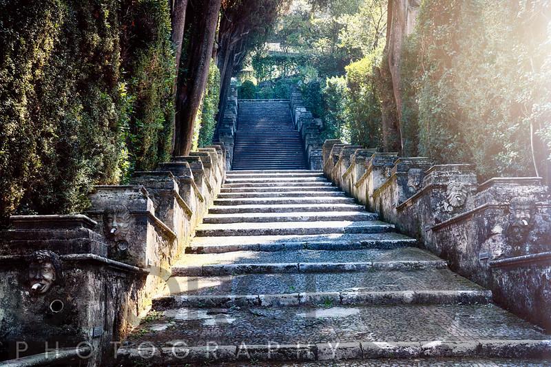 Stairs in a Garden, Villa d'Este, Tivoli, Lazio, Italy