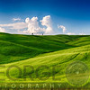 Rolling Hills with Cypress Trees and Wheat Fileds, Tuscany, Italy